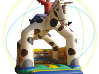 location structure gonflable cheval-cowboy marseille aubagne
