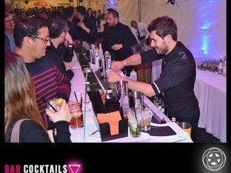 Bar cocktail flair tender STARKIT